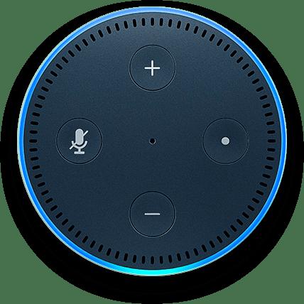 Alexa-enabled device